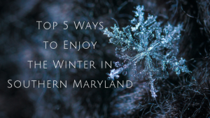 Winter Southern Maryland